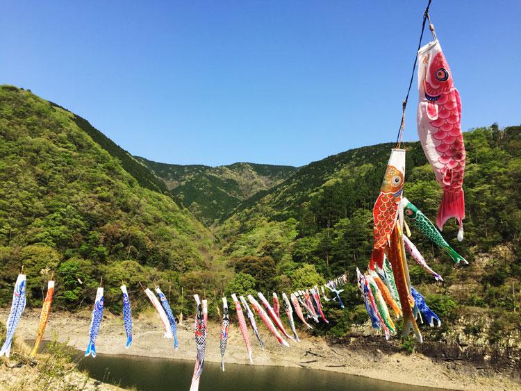 宮川内ダムの鯉のぼり