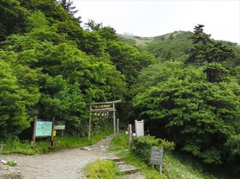 大剣道コース