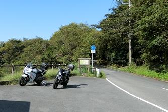 静岡県・伊豆半島・碧(みどり)の丘