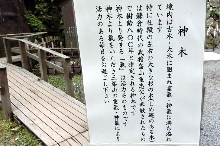 三峰神社・神木の説明