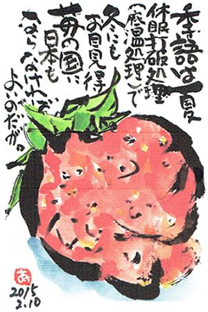 季語は夏。休眠打破処理(低温処理)で冬にもお目見得。苺の国に日本もならなければよいのだが。