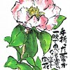 ツバキ?手折った蕾が一晩で思いもよらない姿で開花–アキラさんの絵手紙