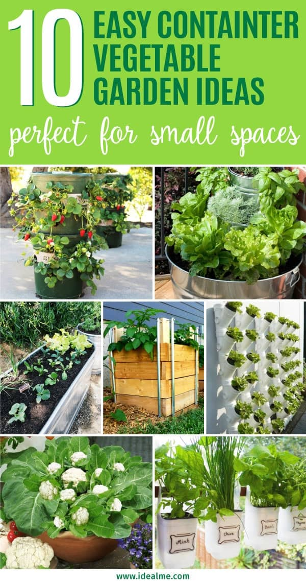 10 Easy Container Vegetable Garden Ideas for Your Yard ... on Outdoor Vegetable Garden Ideas id=63635