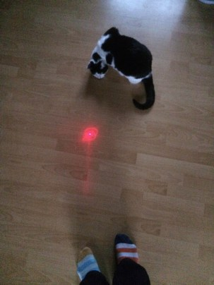 Day 54, 12/6/2015. What's happening? No, not the laser - the socks!