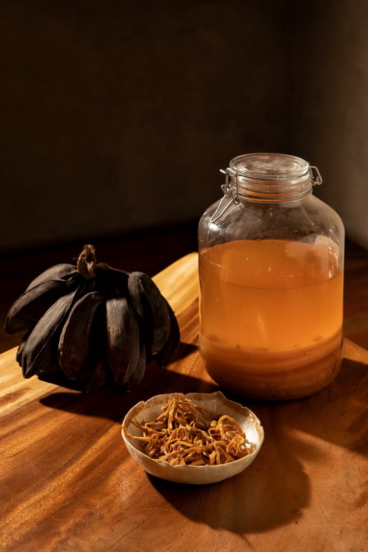 fermentation culture