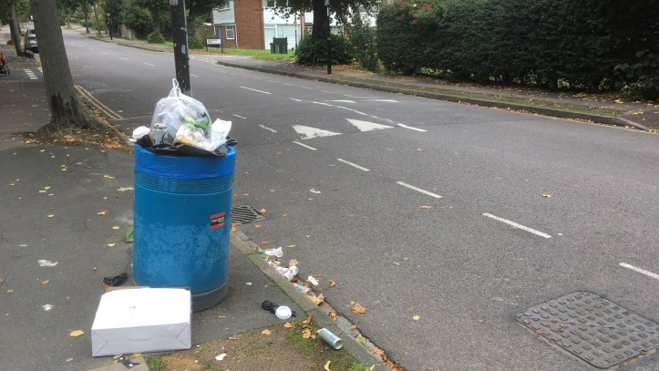 Litter in Lee Park, 20 September 2017