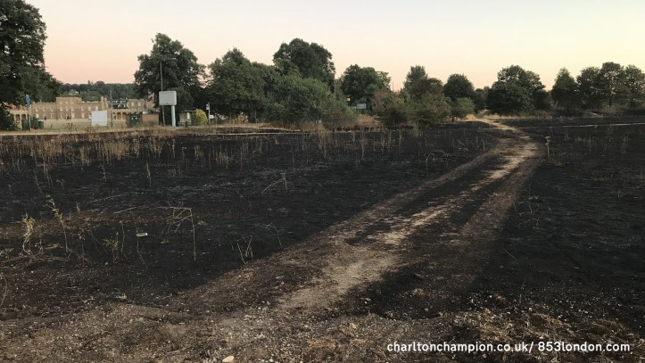 Woolwich Common Fire  Ministry Of Defence Ignored Council