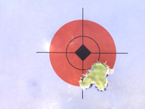 "Five shots at 100 yards, 1.5"" orange circle."