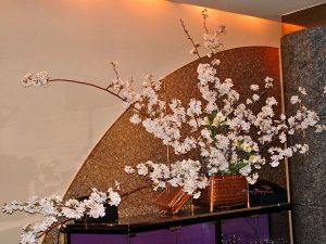桜の生けこみ