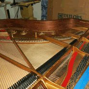 soundboard repair by a steinway specialist