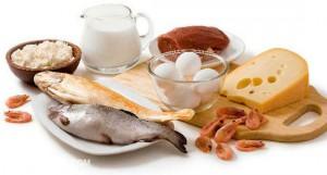Питание жирами и протеинами