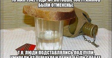 Правда о фронтовых 100 граммах