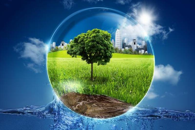 Рейтинг самых экологичных стран и городов