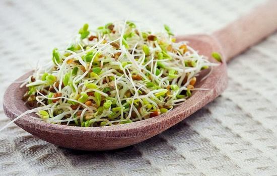Фруктовый салат с ростками пшеницы