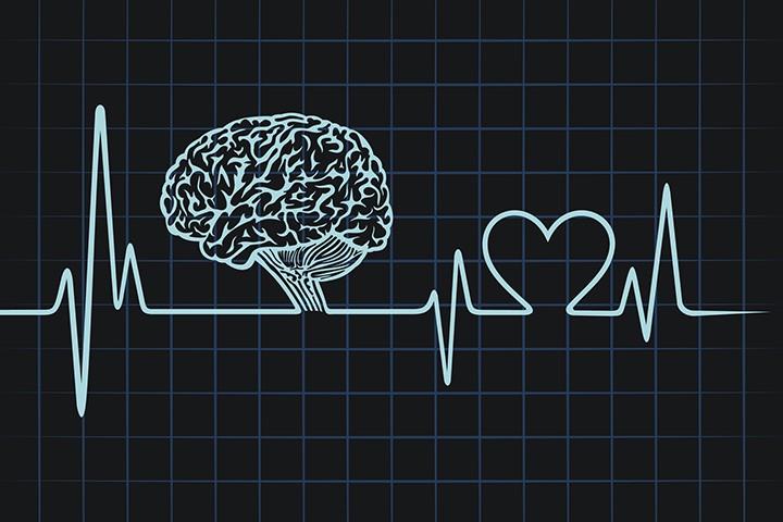 Как защитить сердце и мозг