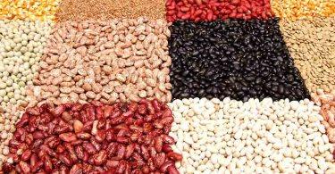 Лечебные свойства бобовых