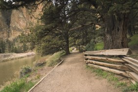 Wide, even paths on the River Trail
