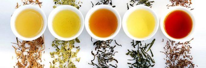 雲南普洱茶餅