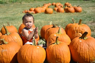 Clapping with the pumpkins!