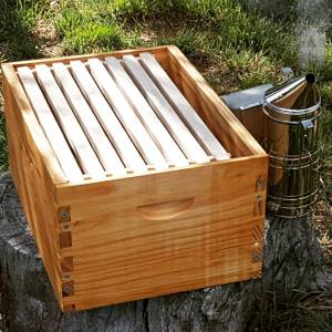 Beekeeping: bees, hives and pens
