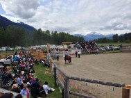 Local rodeo! Dream come true!