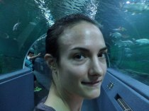 Sylvie von Duuglas-Ittu - Glass Tunnel - Chiang Mai Aquarium