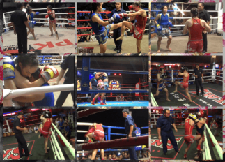 All my Fights - Sylvie von Duuglas-Ittu - Muay Thai