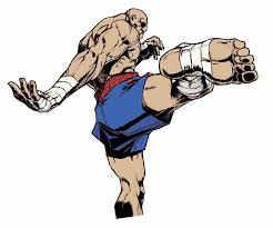 street fighter sagat kick
