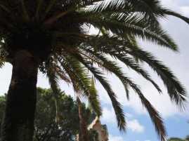 グエル公園61ガウディ邸_バルセロナ5-2ある日本人観光客のスペイン旅行記
