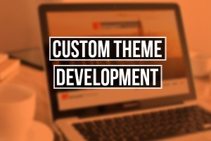 theme-development
