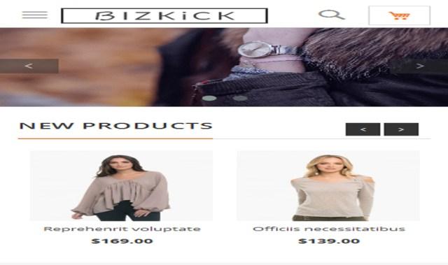 bizkick