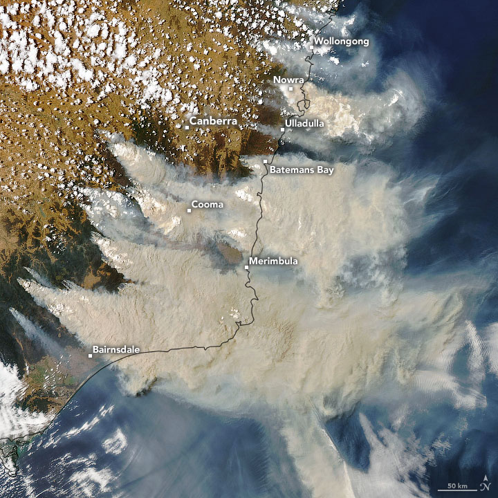 Fig. 1: Smoke plumes from bushfires in southeast Australia on January 4, 2020, as seen by the MODIS imager on NASA's Aqua satellite. (Image: NASA Earth Observatory)