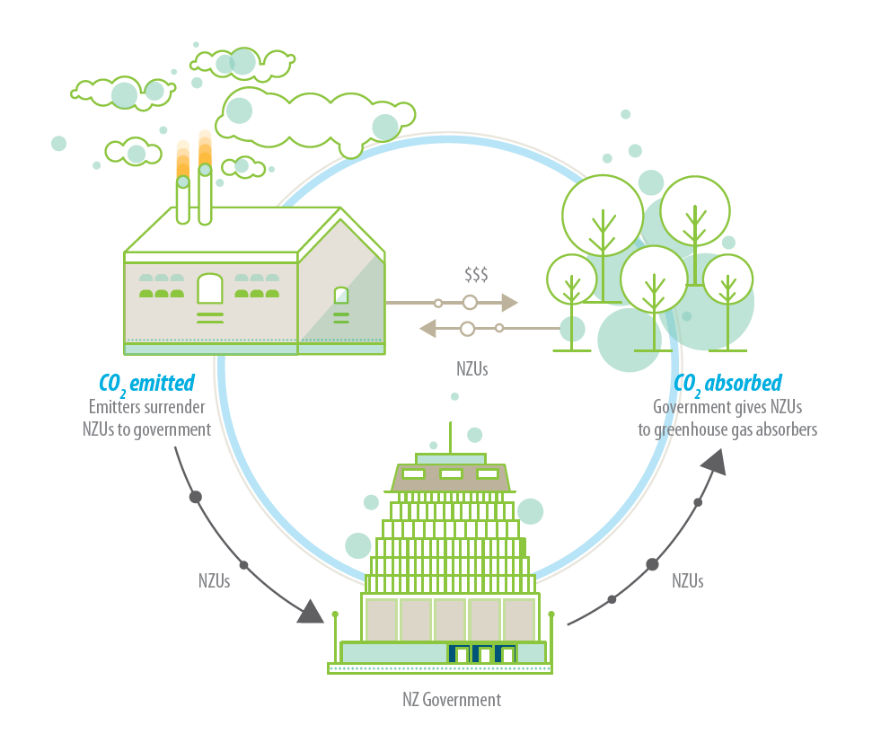 Fig. 1: The New Zealand Emissions Trading Scheme (ETS) is based around a trade in units that represent a tonne of carbon dioxide equivalent (CO2-e). Businesses that emit greenhouse gasses have to surrender these units to the Government annually, while those who remove rather than emit greenhouse gases (e.g. those who plant and grow forests) can receive units. These units are worth money and can be bought, sold, or traded. (Image: Environmental Protection Authority Te Mana Rauhi Taiao)