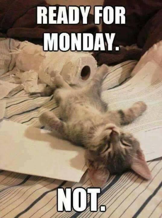 Monday.  No