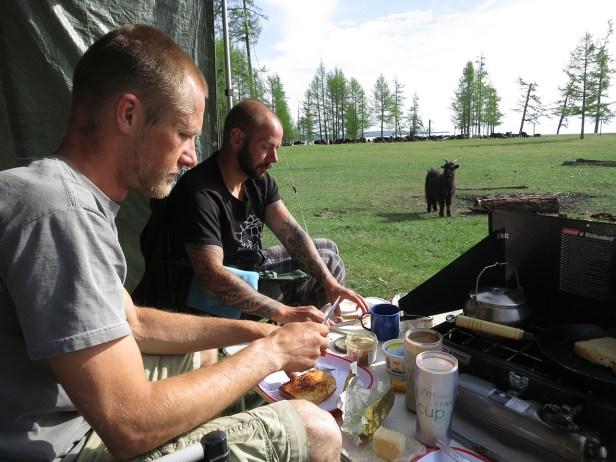 Frühstück mit Ziegen