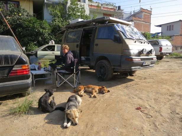 Hundeparadies bei Irvine