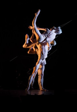 Ballet Tree of Codes. Foto: Joel Chester Fildes