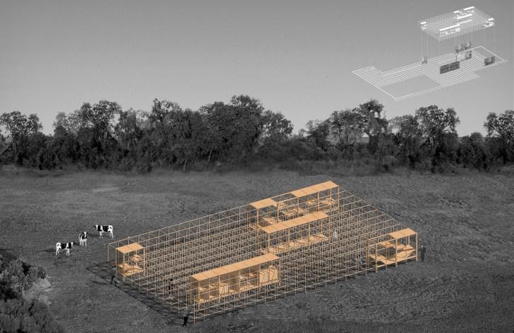 Hello Wood - Habitar el Manifesto Proyecto
