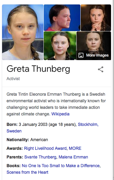 Snow in Houston - Greta Thunberg