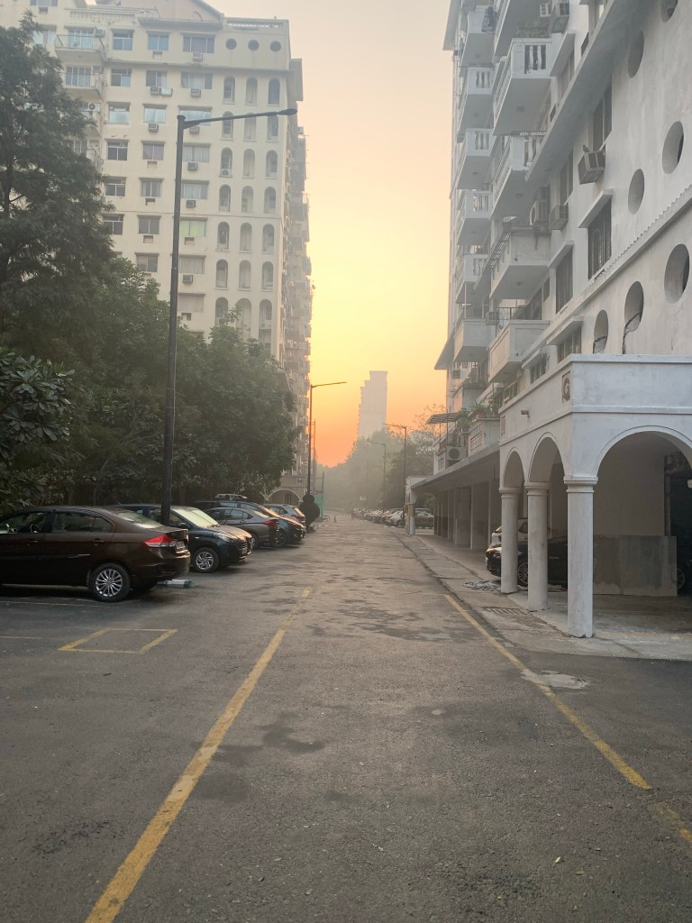 Morning - sunrise