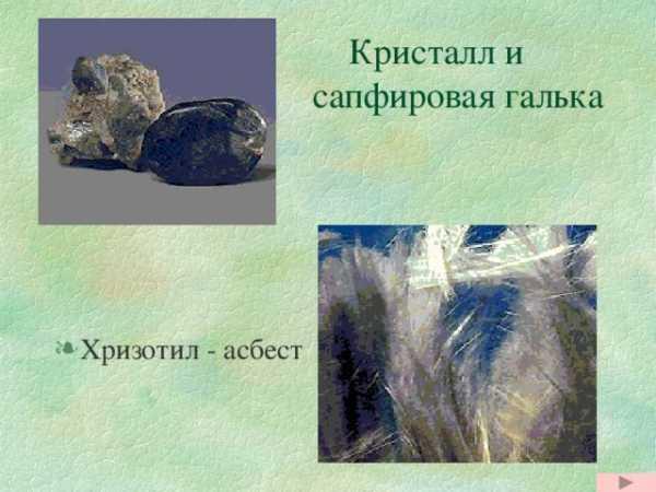 Ильменский заповедник был создан для охраны чего ...