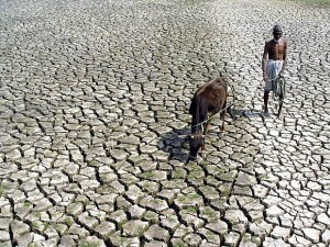 famine crop failure dry