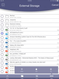Lexar JumpDrive App File Manager