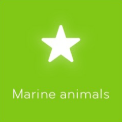Marine animals 94