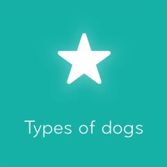 Types of dogs 94