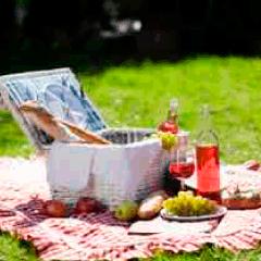 94 picnic basket picture