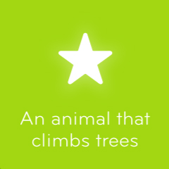 An animal that climbs trees 94