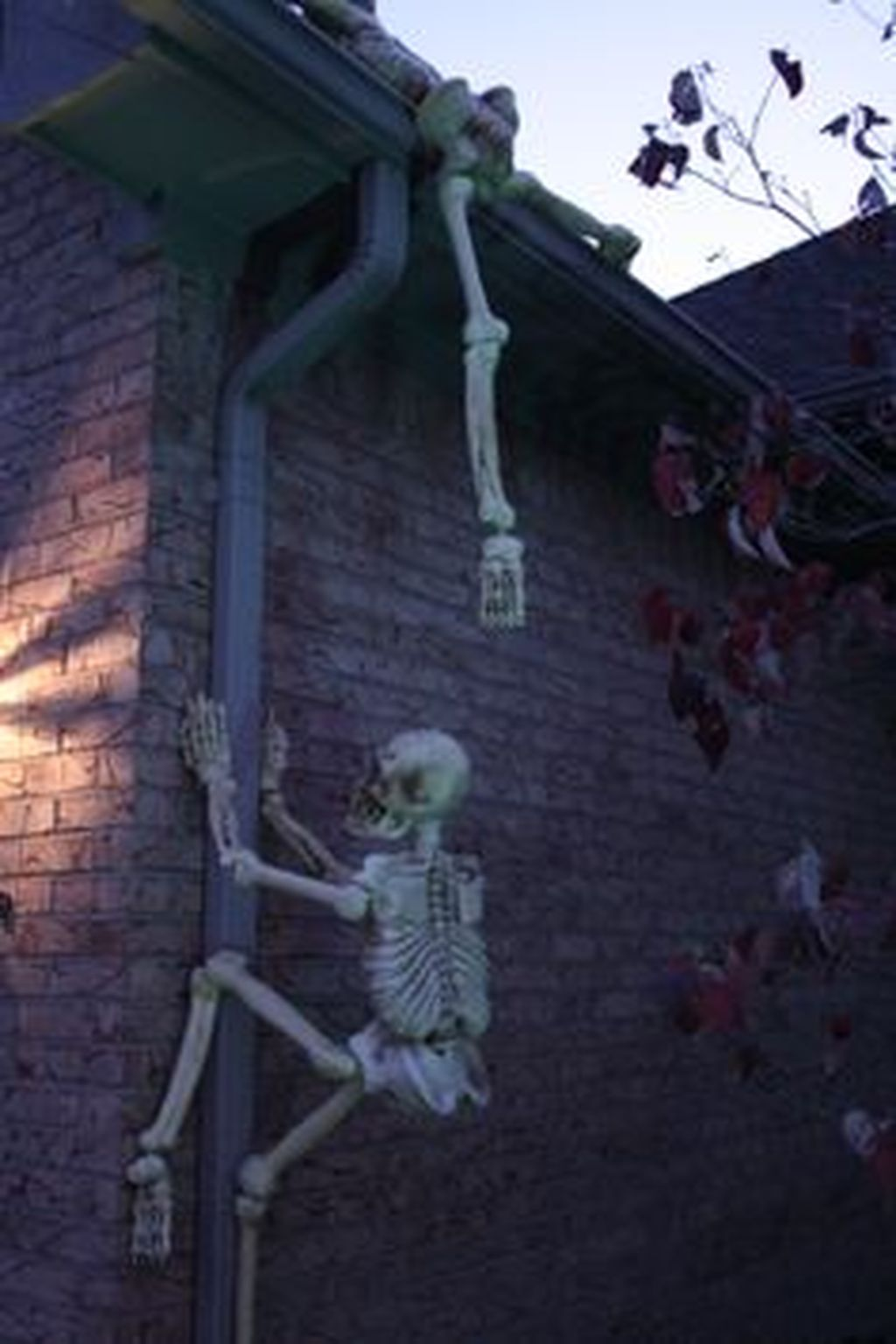 Scary Front Yard Halloween Decoration Ideas 48