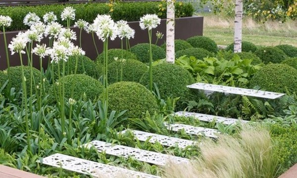 Inspiring Planting Combination Ideas For Your Garden 01
