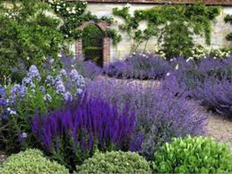 Inspiring Planting Combination Ideas For Your Garden 09